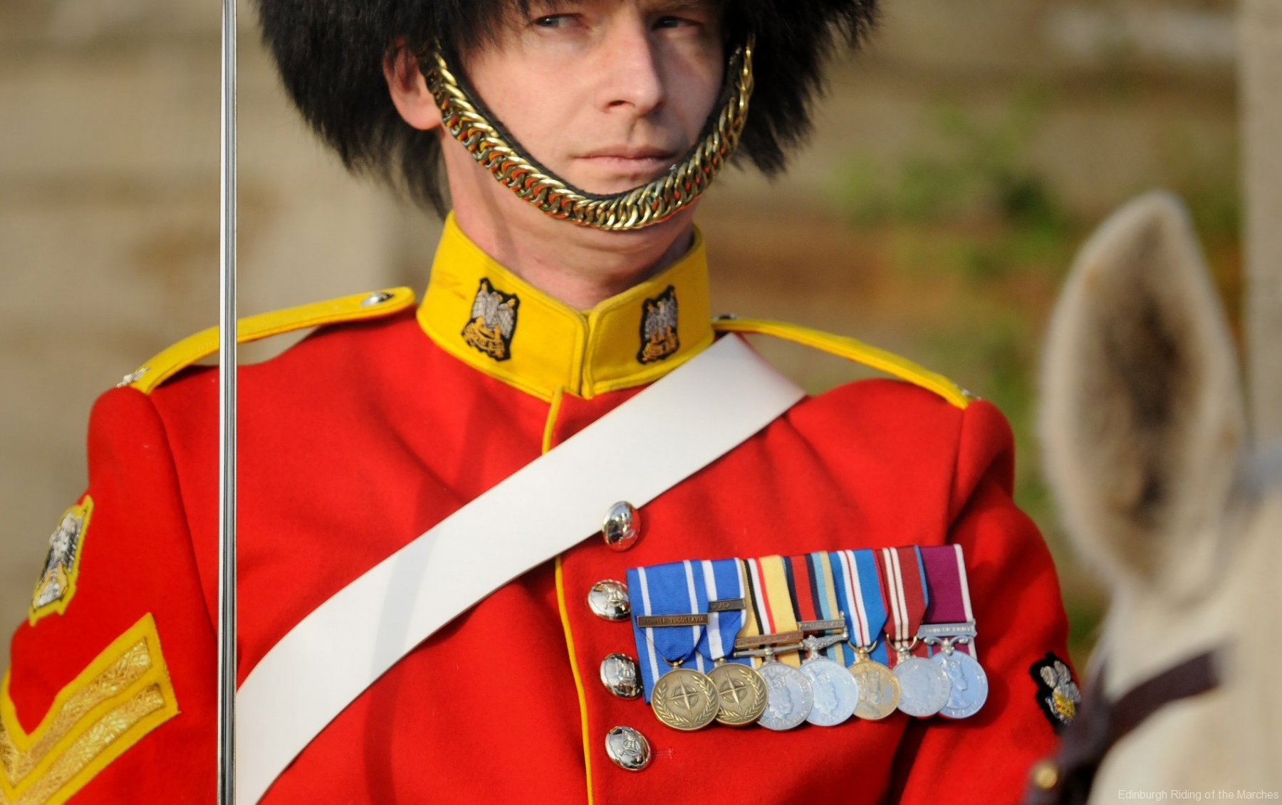 Mounted officer of Royal Scots Dragoon Guards