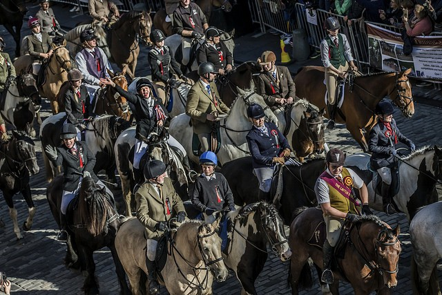 The cavalcade of 280 horses riding up the Royal Mile