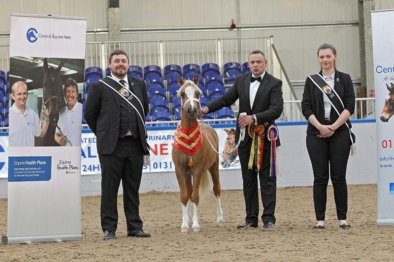 2019 City of Edinburgh Horse Show Supreme Champion