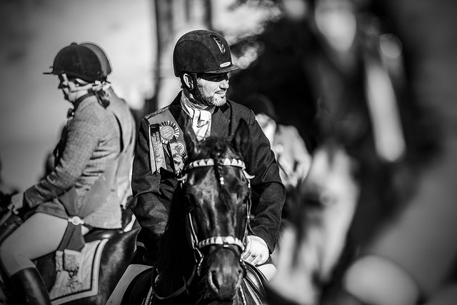 Rider ridng his Friesian at Edinburgh Riding of the Marches