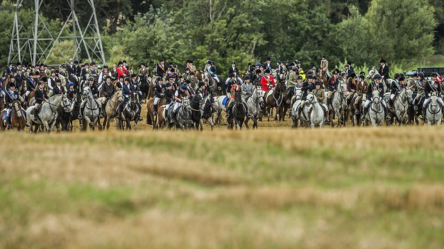 The first gallop field