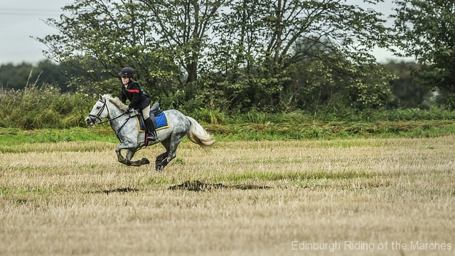 Edinburgh-Riding-of-the-Marches-grey-horse-take-off-photo-by-Phunkt.com_